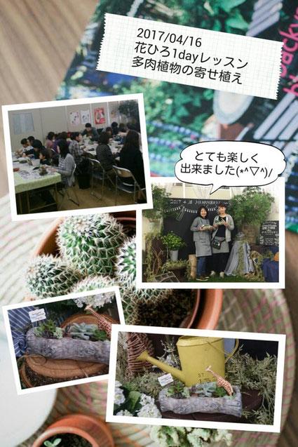 多肉植物 お花教室 鯖江 花屋