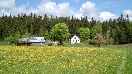 Glafsered in the spring