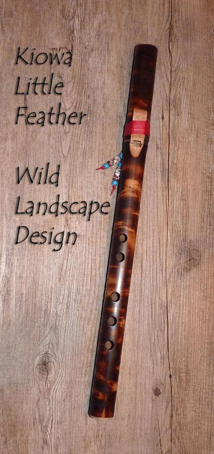 Kiowa Little Feather - Wild Landscape. Northern Lights Flutes Jürgen Hochfeld