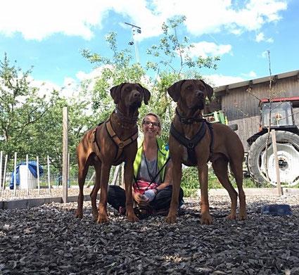 Hundeschule, Ernährungsberatung, World of Dogs