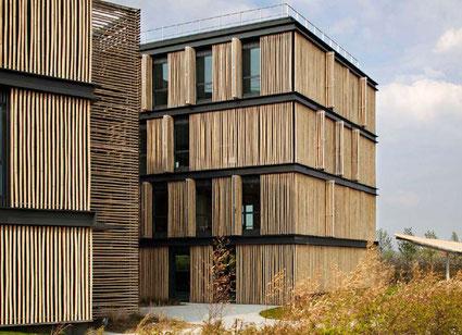 Le bambou, matériau de construction parmi les plus anciens... et parmi les plus écologiques