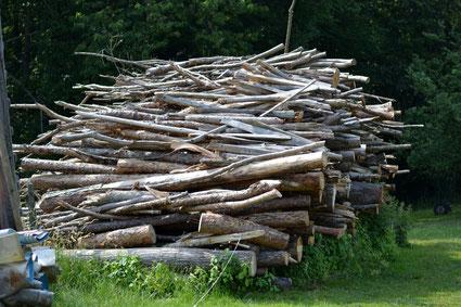 Forstwirtschaft Schafmandl seit 1779
