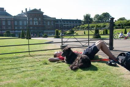 Hund und Junge liegen auf Rasen vor Kensington Palace