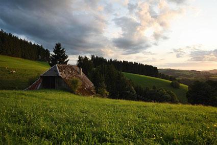 Schwarzwälder Hof am Abend
