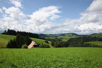 Schwarzwaldhof im Sommer