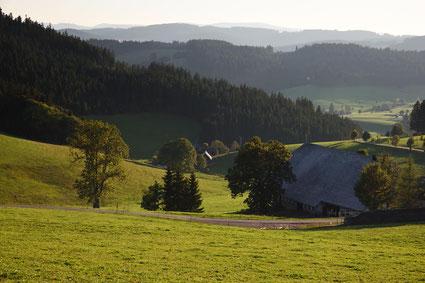Bauernhaus Schwarzald