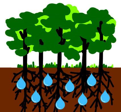 貯水機能の説明図
