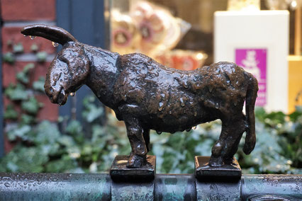 Was geht in Bremen? Esel der Bremer Stadtmusikanten in der Böttcherstraße