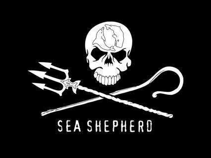 Sea Shepherd Conservation Society. Schutz der Fauna und Flora der Weltmeere!