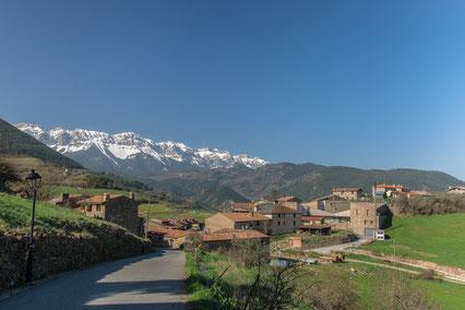 Bicicleta ruta circular tc210 - Montellà