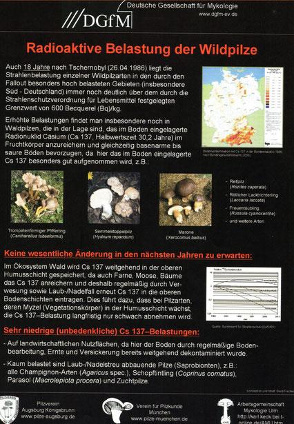 Merkblatt 6