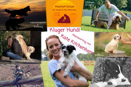 09.11.17 Abendvortrag Kate Kitchenham Kluger Hund!