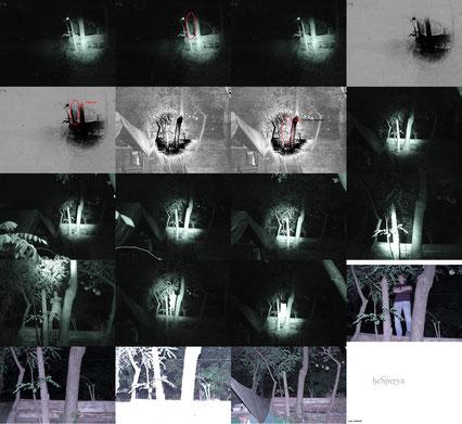 Collage degli scatti e delle contro prove