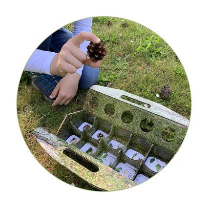 schlaubatz Sammelkiste - Mit Kindern auf Schnitzeljagd in der Natur