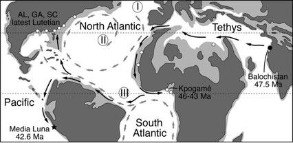 Rustas hipotéticas de migración (El punto negro indica el origen del grupo y la estrella la localidad de Peregocetus) / O. Lambert
