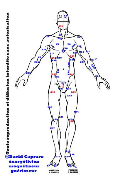 Formation au magnétisme, libéré les émotions du corps