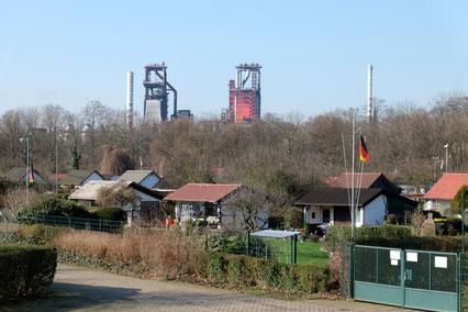 Blick über Schrebergärten auf ThyssenKrupp
