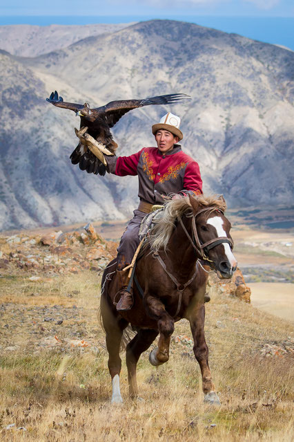 Ruslan with his majestic eagle galopping in the Kyrgyz mountains