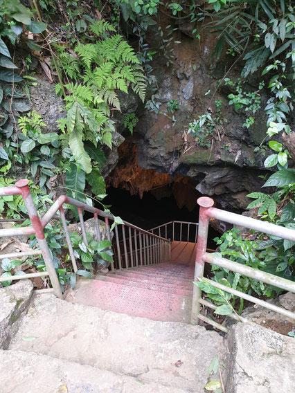 Bird Park Tropfstein-Höhle