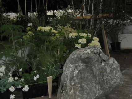 Planting has started! / 植栽がはじまりましたよぉ!