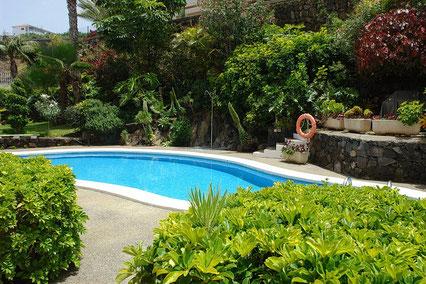Runder Pool eingebettet in tropischen Pflanzen.