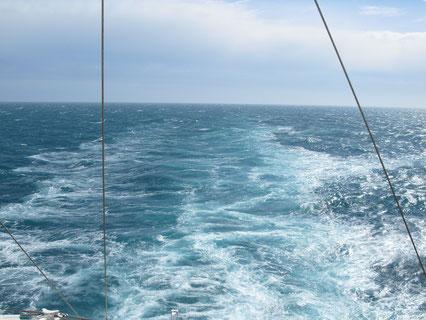 Blick ins Kielwasser von AIDAaura am 7.5.2010