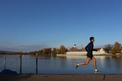 Lockerer Lauf am Morgen entlang des Seerheins hier in Konstanz
