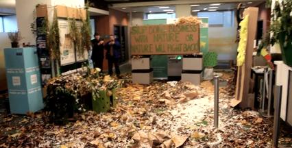 """""""Operation Vivaldi"""" i Bruxelles: En bank bliver omgarnet af natur"""