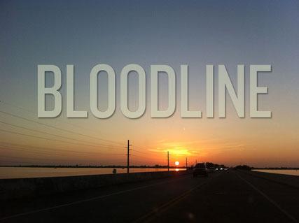 Bloodline seizoen 2 van Netflix, lees erover op de serie blog op www.studiolasogne.nl