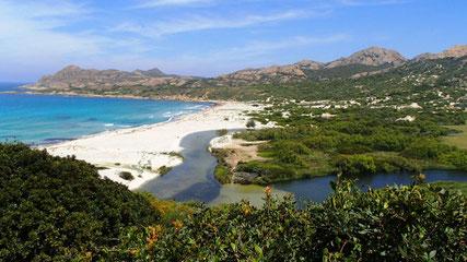 Blick von oben: der Camping befindet sich rechts hinter dem Fluss. Das Bild zeigt den Weg vom Camping Villag de LÒstriconi zum Meer.