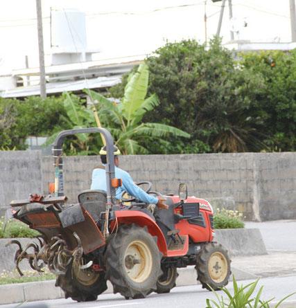 畑に向かうトラクターも ゆったりした島の風景の一部