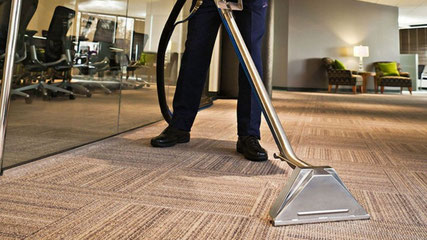 Carpet Steam Cleaning Newcastle and Hunter Valley