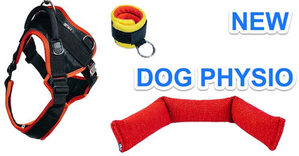 Dog Physiotherapy Equipment