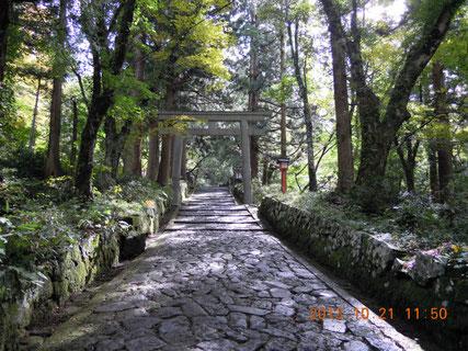 日本一長い石畳の参道で大神山神社奥宮に向かう