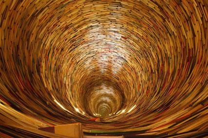 Mon métier : Vous guider dans les couloirs d'autres connaissances, vous montrer d'autres chemins possibles...