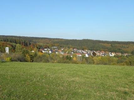 Ansicht Waldhölzbach