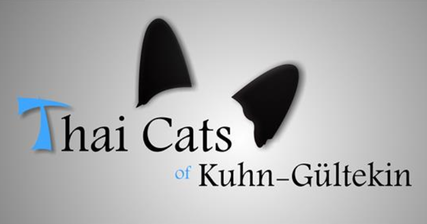 Thai Cats of Kuhn-Gültekin