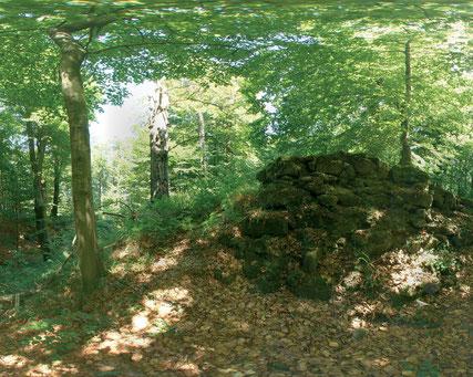 Leistruper Wald Route © Naturpark Teutoburger Wald / Eggegebirge