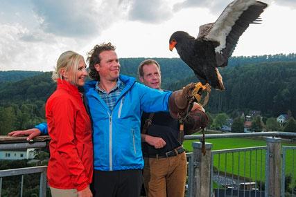 Adlerwarte Berlebeck © Themenmanagement Wandern Teutoburger Wald Tourismus, R. Lang