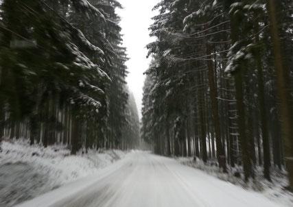 Waldweg © Stadt Brakel