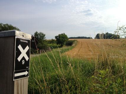 Hansaweg © Touristikzentrum Westliches Weserbergland