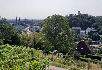 Blick vom Johannisberg auf die Sparrenburg © Bielefeld Marketing GmbH