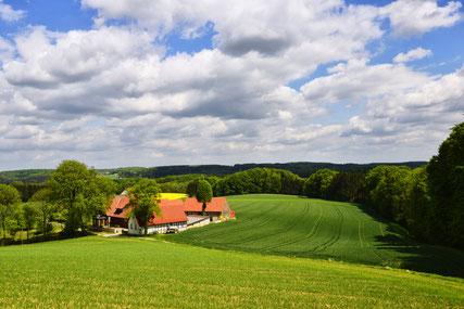Bäuerlich geprägte Landschaft © Tourismusverband Osnabrücker Land e.V.