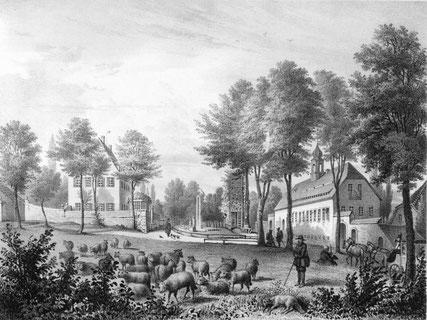 Das Rittergut Schönfeld um 1860