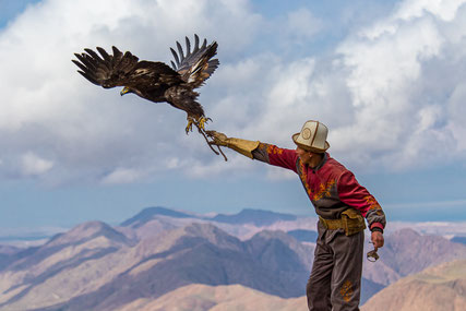 Salavat let his eagle free to scan the area.