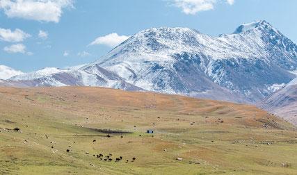 The mountains near Bokonbaevo