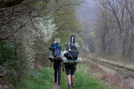 Pfadfinderwanderung, Wald und Schienen