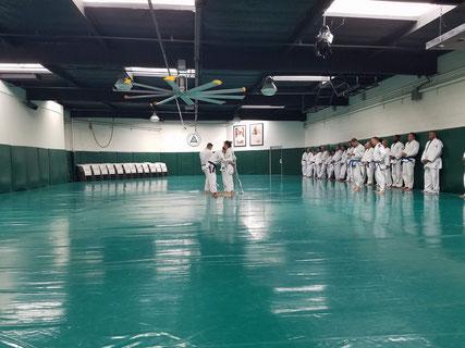 Prime Combatives Belt a Cesena - Corso di difesa personale Combatives, Gracie Jiu-Jitsu