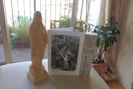 南アフリカから届いたカードには、嬉しいお知らせが(^^)