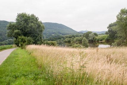 Naturbelassene Weser zwischen Bad Oeynhausen und Porta Westfalica © Menacher